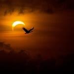 solar-eclipse-1