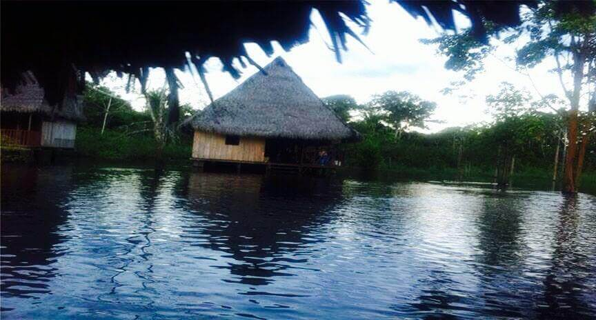How The Amazon Rainforest Changed My Life